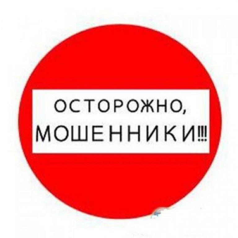 В Алтайском крае местные жители все реже становятся жертвами мошенников