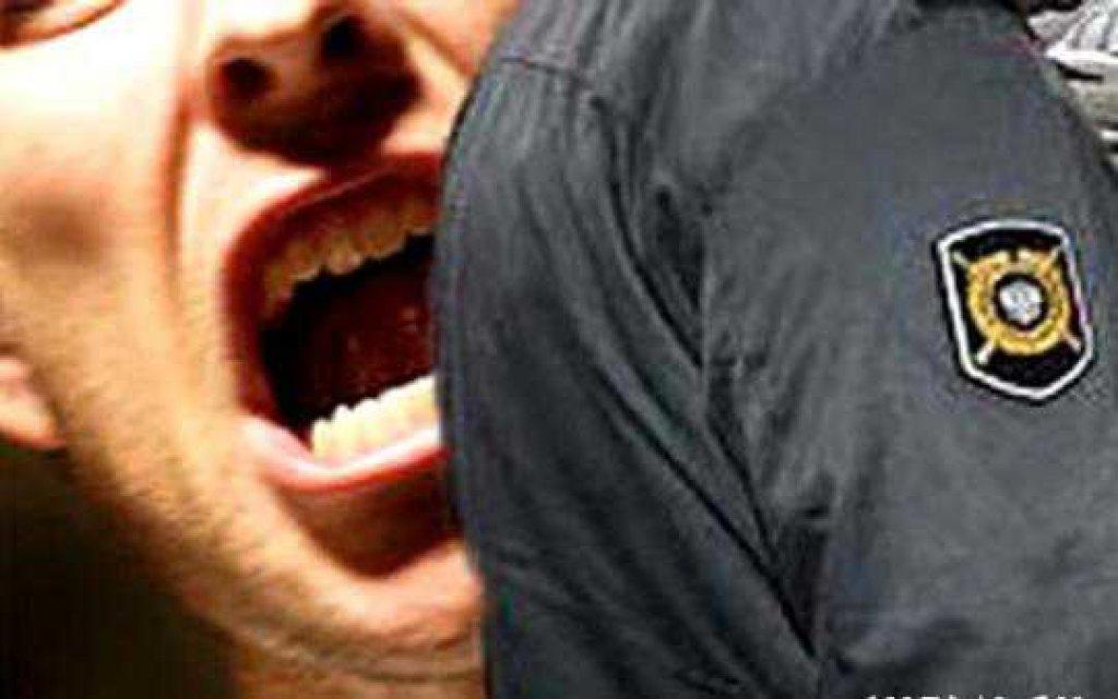 В Никольске осужден водитель, укусивший сотрудника полиции, который мешал ему съесть наркотик